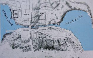 Lokalt åtgärdsprogram för Brunnsviken